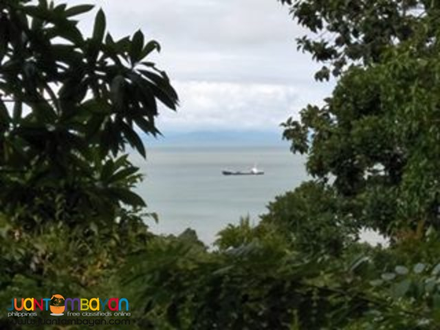 27000 sqm Guimaras Property over view facing ocean