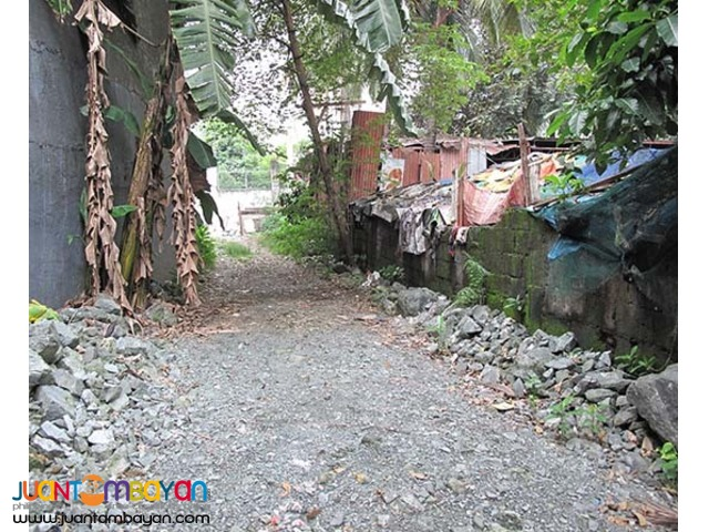 PH839 Lot for sale in Congressional QC at 25M