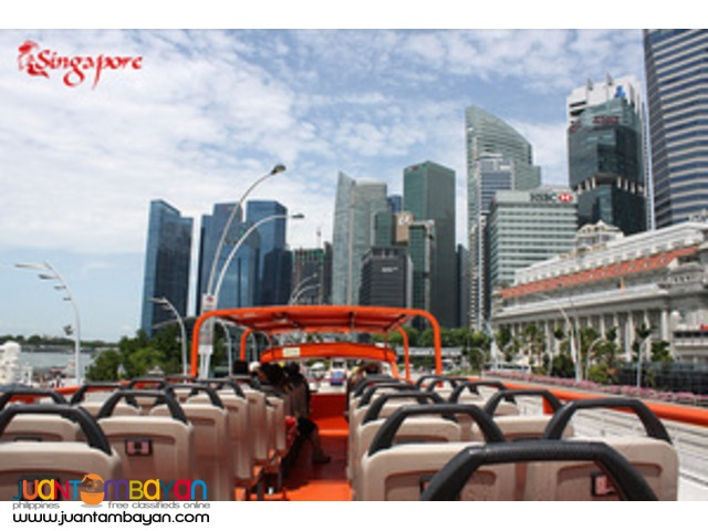Singapore tour package, with hopper tour and Hainanese Chicken meal