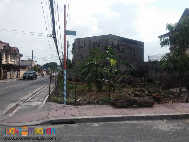 Goodrich House n Lot for Sale in Concepcion MArikina nr Bluewave