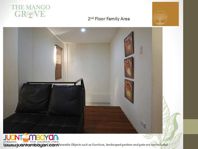 Affordable House and Lot near Makati City and Metro Manila