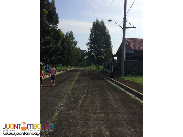Royale Tagaytay Estates Lot For Sale Alfonso Cavite