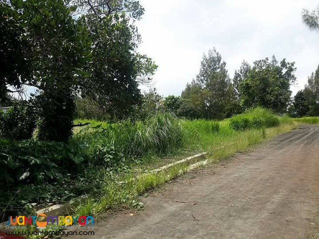Tagaytay Royale Estates Lot For Sale