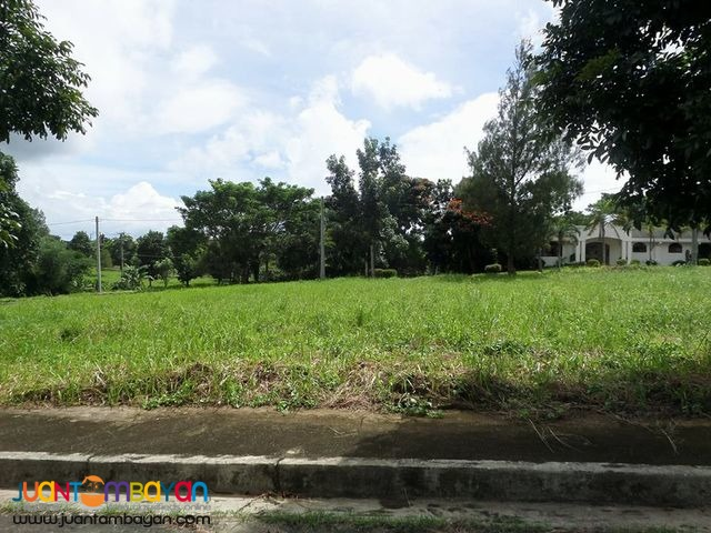 Lot For Sale in Royale Tagaytay Estates Phase 2