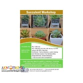 Start Your Own Succulent Plant Business Seminar 2018