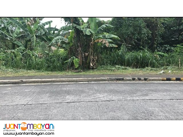 Lot in Summerhills Subd.Brgy.De la Paz Antipolo city