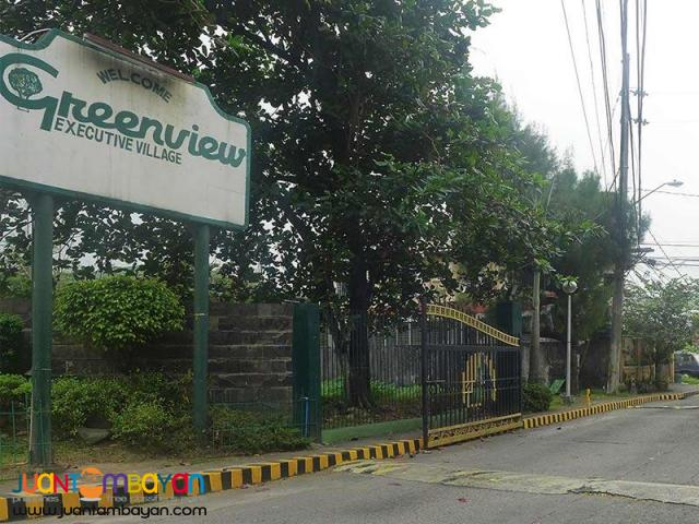 Big Residential Lot Greenview Executive Village Quezon City