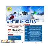 ALL IN 5D4N Korea Winter Ski Promo Tour Package