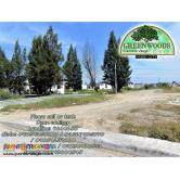 Greenwoods Hulugan Lot for Sale in Pasig