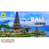 4D3N Bali Indonesia Tour Package + Airfare