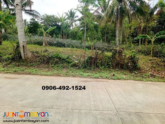 Preselling Residential Lots For Sale in Indang with 15% Discount