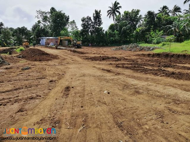 Springwood Ville 2 Residential and Farm Lots For Sale