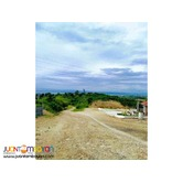 Very affordable lot for sale in Minglanilla at 5 years to pay 0%