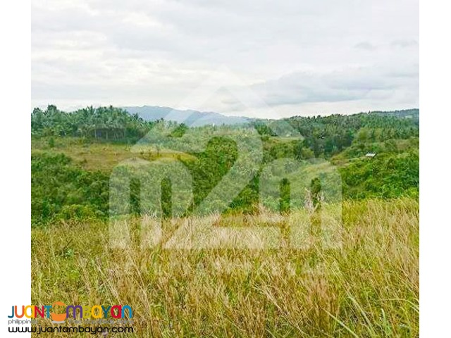 St. Francis Heights(LOT ONLY) Can-asujan Carcar City, Cebu