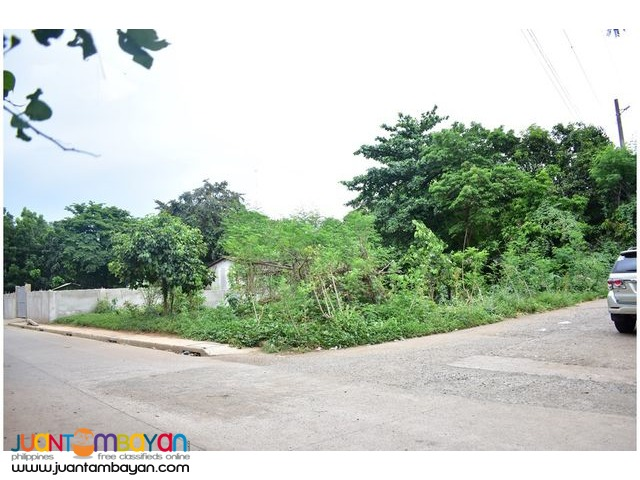 Lot For Sale (Antipolo)