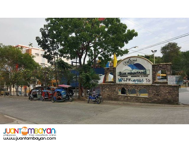 Blue Mountains Lot for Sale in Sumulong Antipolo