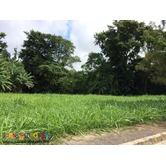 Pueblo Del Sol Tagaytay Lot for sale