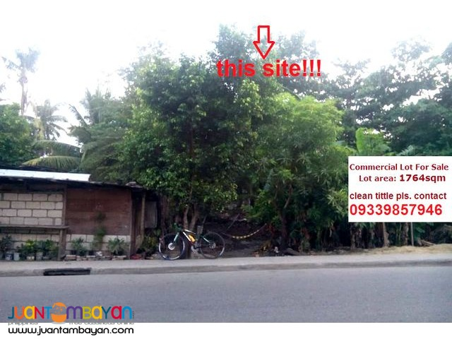 Commercial Lot Along the Road in Gun-ob Lapu-lapu City