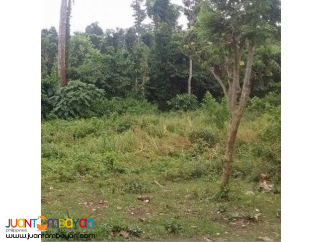 Farm lot for sale at balele tanauan batangas