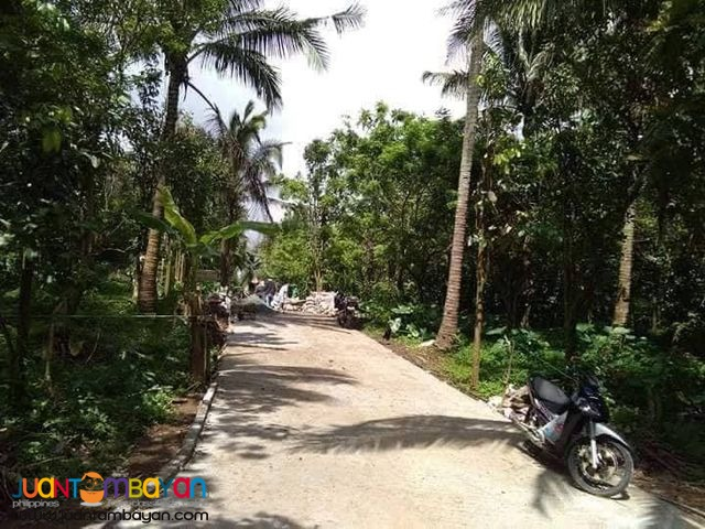 Balubad Residential Lot For Sale Alfonso Cavite