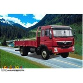 -6 Wheeler Cargo Dropside (25ft)-