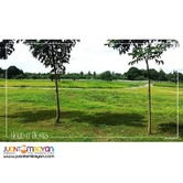 MAIN ROAD LOT for sale in Cavite near Tagaytay