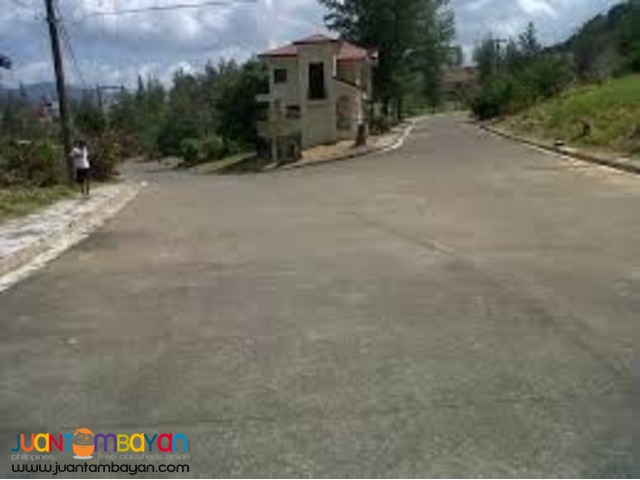 Lot for sale in Subic Alta Vista Royale