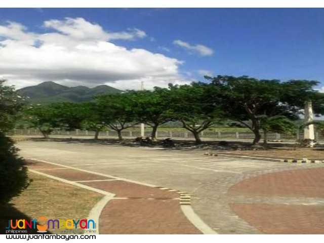 Lot for sale in Sto. Tomas Batangas