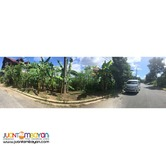 Lot for sale in Vista Verde Country Homes Cainta Rizal