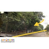 Lot for Sale Cavite 2.8 Ha for House or Warehouse Dev