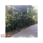 Farm Lots For Sale in Alfonso Cavite, Clean Title