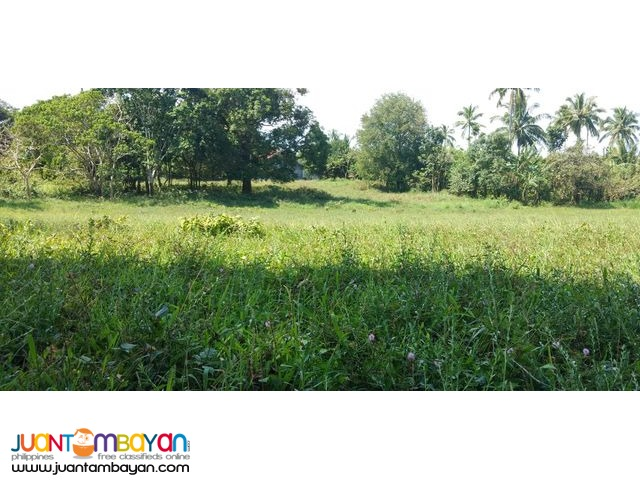 Lots for Sale in Alfonso,Cavite near Twin Lakes