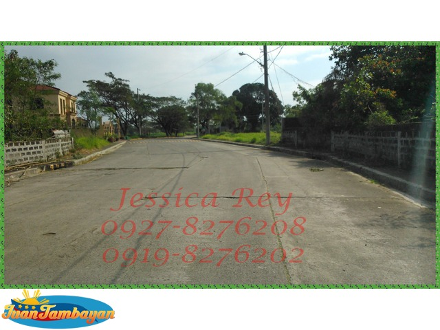 Greenmeadows at the Orchard lot for sale Dasmarinas Cavite
