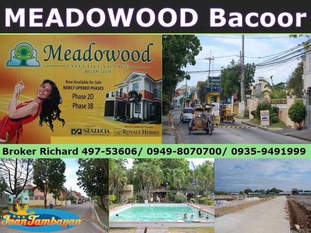 MEADOWOOD Bacoor Cavite Subdivision Lots = 8,500/sqm  - ₱1,275,000.00