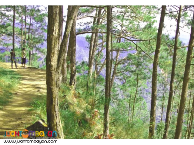 Baguio Package C, Overnight with Tree Top Adventure Baguio