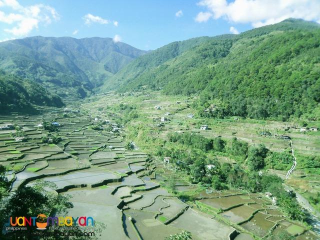 Banaue Tour 2 Days Sightseeing - Hapao and Bangaan Rice Terraces