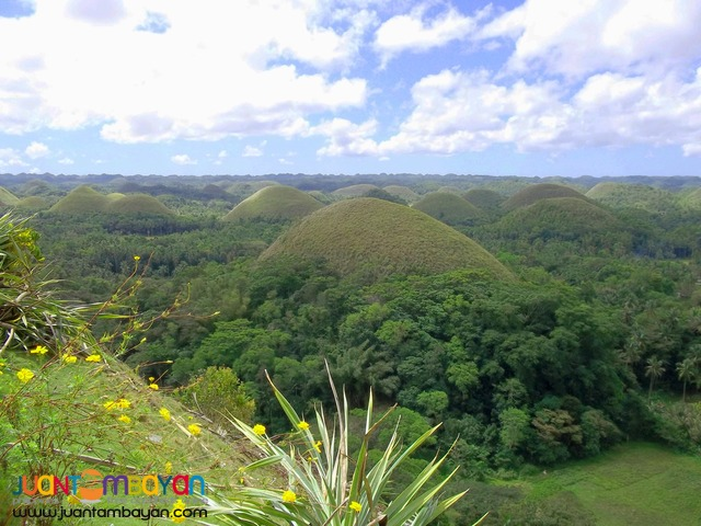Bohol Tour Package 1, Bohol tour A, Panda Tea Garden Suites overnight