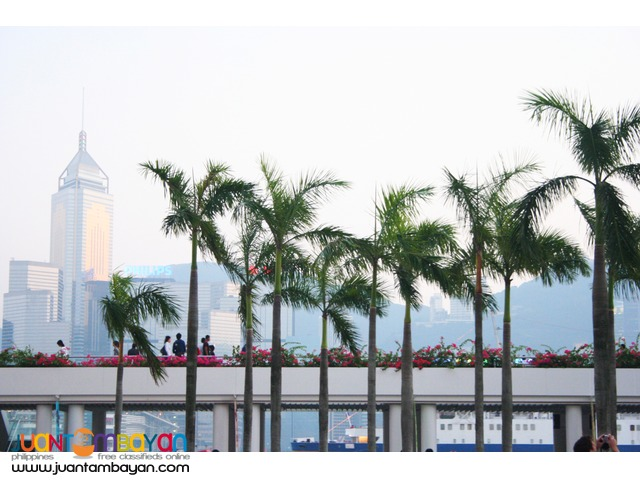 Hongkong Tour, Lantau Island with Vegetarian Lunch