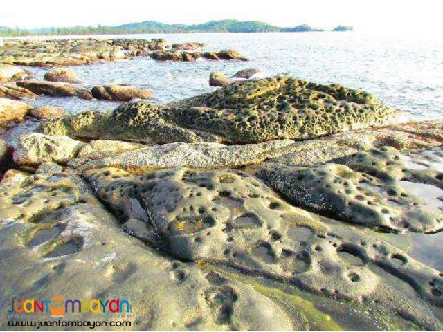 Malaysia tourist spots,Kinabalu Park & Poring Hot Spring