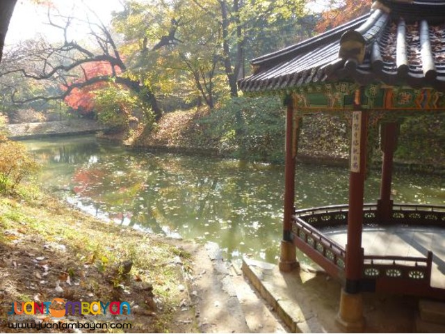 South Korea Tourist Spots,Korea Morning Tour