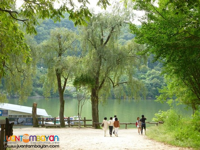 Seoul Korea Tourist spots, Nami Island, Full Day Tour