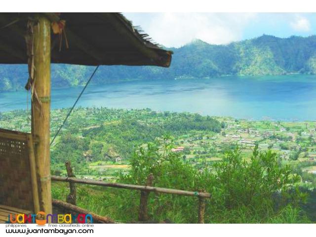 Bali Indonesia Tour, Ubud Art Village and Monkey Forest