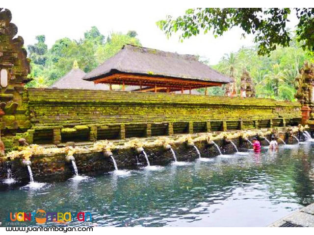 Beauty of Bali Tour