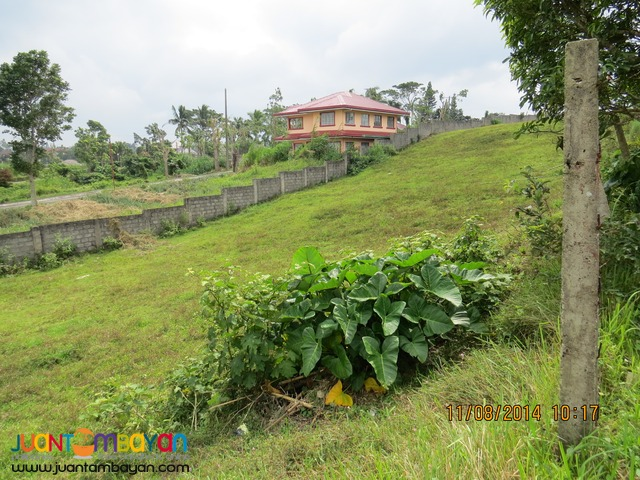 Tagaytay City Residential-Commercial Lot For Sale! Windsor Heights