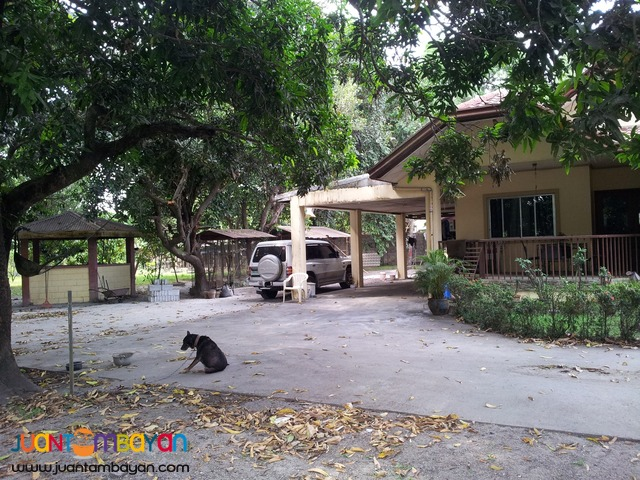 A 3-BR house and lot (2800sqm) in Castillejos, Zambales.