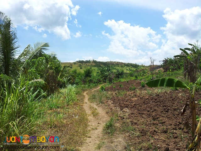 22-ha. land lot estate property Tanay for leisure development.