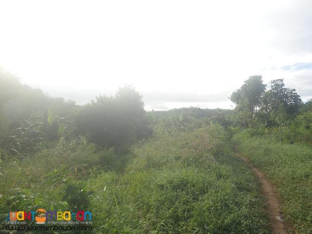 22-ha. land lot estate property Tanay for leisure development.