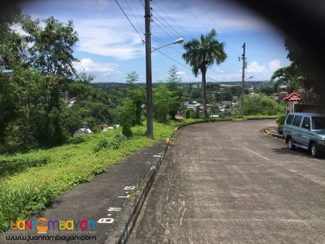 Lot for sale Royal Cebu Estates, Casili Consolacion Cebu.