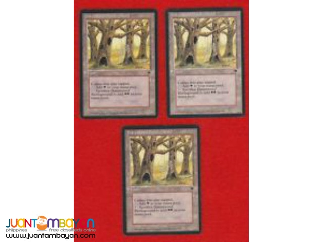 Havenwood Battleground (Magic the Gathering Trading Card Game)