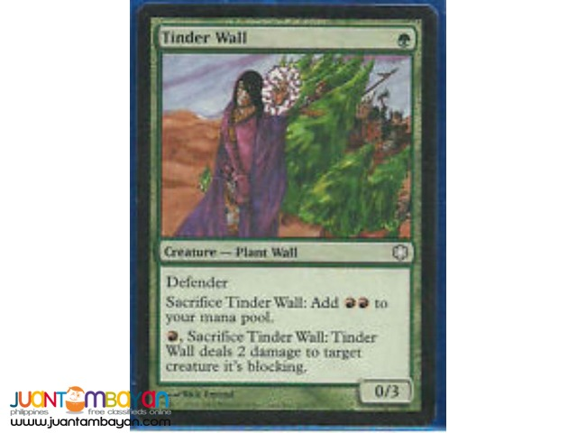 Tinder Wall (Magic the Gathering Trading Card Game)
